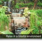 EXPERIENCE A FASCINATING NATURE IN MONSOON